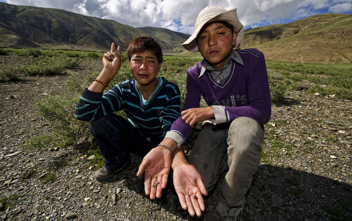 Tibet Two young Tibetan shepherds showing off the andesine specimens that they helped Richard Hughes and Dana Schorr collect at Dhongtso 5 (Zha Lin) on 20 August, 2011. These teenage boys had no advance notice of the arrival of Hughes and Schorr, nor did they have any communication with anyone in the village prior to our arrival at the collection point. And yet they had no problem immediately pointing out where andesine could be collected when asked. Photo: Richard W. Hughes